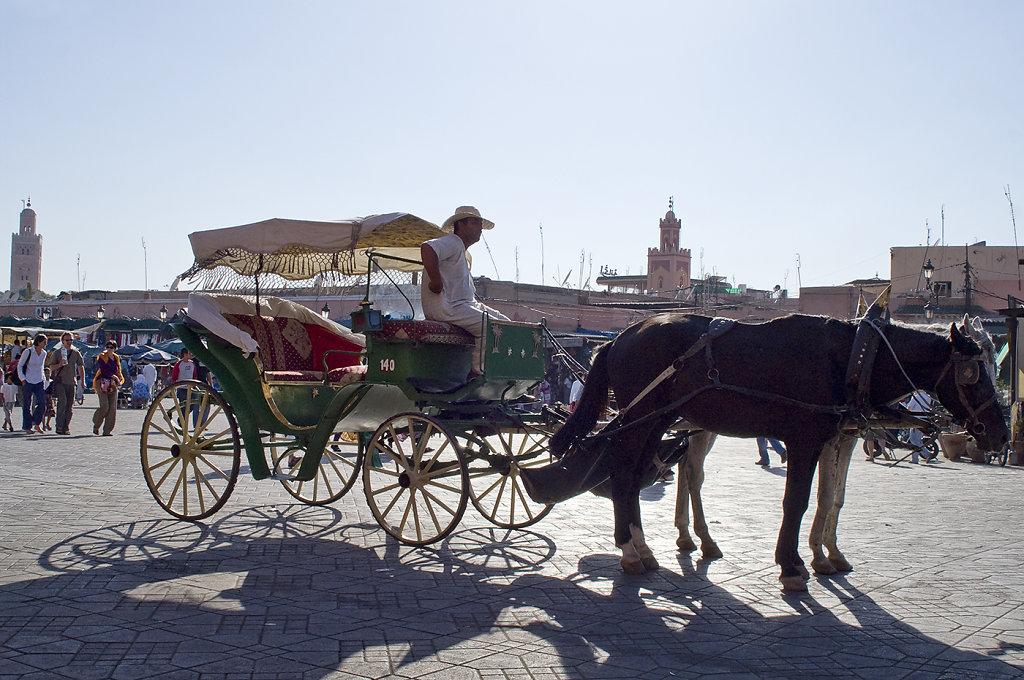 Marrakech-0120.jpg